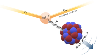 Charge radius coherent elastic neutrino-nucleon scattering